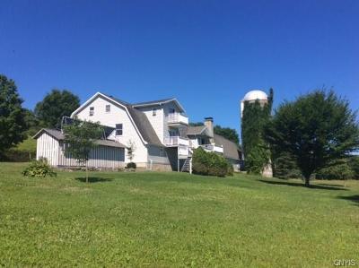 Newport NY Single Family Home A-Active: $695,000