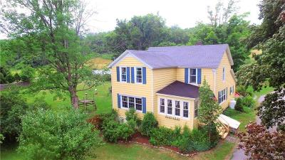 Cazenovia Single Family Home A-Active: 3907 Rippleton Road