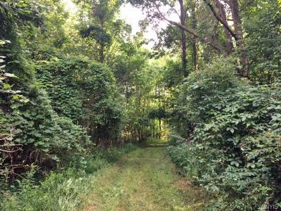 Genesee County Residential Lots & Land A-Active: 00 Walker Road