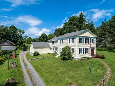 Holland Patent Single Family Home A-Active: 8235 Thompson Road