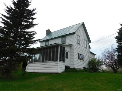 St Lawrence County Single Family Home A-Active: 8559 State Highway 58