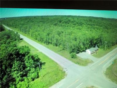 Morristown NY Residential Lots & Land A-Active: $289,000