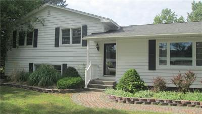 Le Ray Single Family Home A-Active: 26721 State Route 3