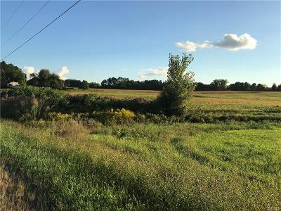 Residential Lots & Land A-Active: 7246 Chestnut Ridge Road