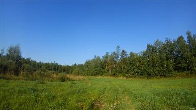 Residential Lots & Land A-Active: County Rd 49