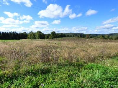 Residential Lots & Land A-Active: Albro Road