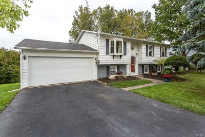 Madison County Single Family Home C-Continue Show: 314 Hills Street
