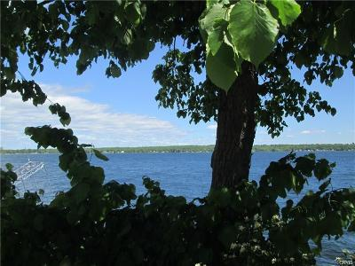 Residential Lots & Land A-Active: 9444 County Route 125