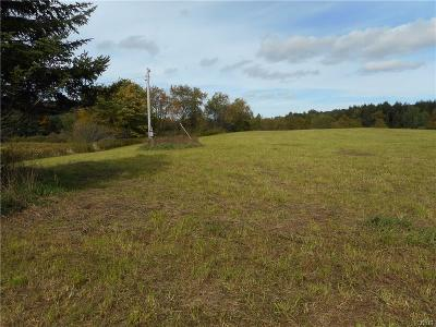 Jefferson County, Lewis County, St Lawrence County Residential Lots & Land A-Active: 00 Cone Road