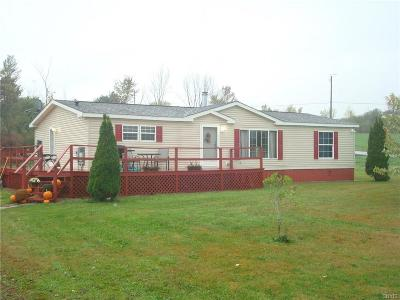 Jefferson County Single Family Home A-Active: 35311 Co Route 15