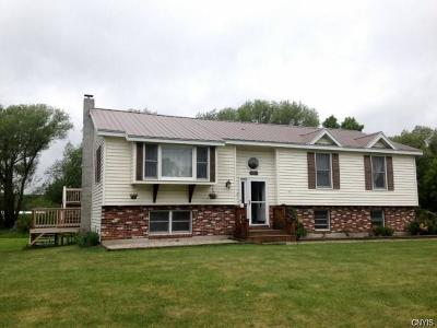 Single Family Home A-Active: 10205 State Route 26