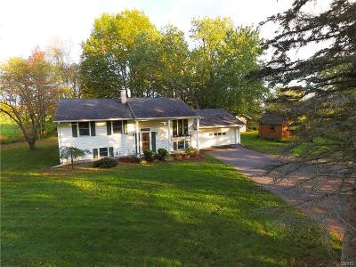 Holland Patent Single Family Home A-Active: 7408 Fox Road