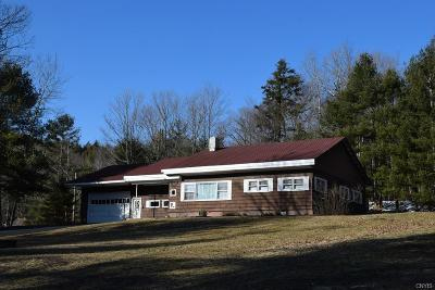 Inlet Single Family Home A-Active: 225 State Route 28