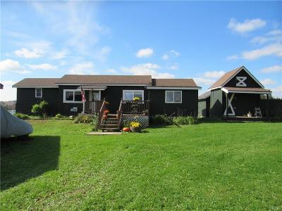 Herkimer County Single Family Home A-Active: 715 State Route 170a