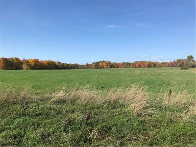 Jefferson County, Lewis County, St Lawrence County Residential Lots & Land A-Active: Co Route 46