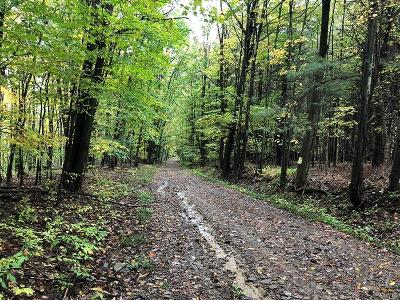 Hinsdale Residential Lots & Land For Sale: 4024 W Keller Hill Road