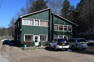 Inlet Multi Family Home For Sale: 235 State Route 28