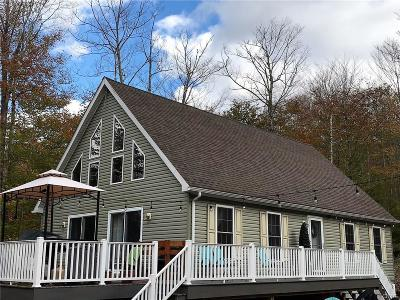 Herkimer County Single Family Home A-Active: 1958 State Route 28