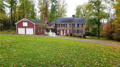 Madison County Single Family Home A-Active: 1496 Route 20