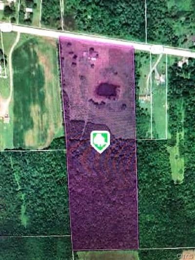 Seneca County Residential Lots & Land For Sale: 1958 State Route 318 Road