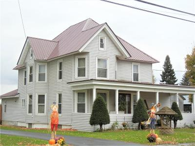 Copenhagen NY Single Family Home A-Active: $198,000