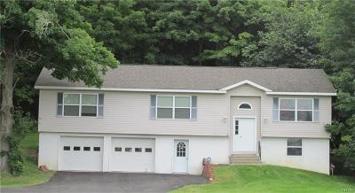 Watertown Single Family Home A-Active: 16320 Us Route 11