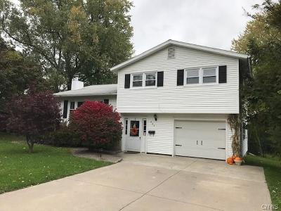 Single Family Home A-Active: 863 Milford Dr Drive