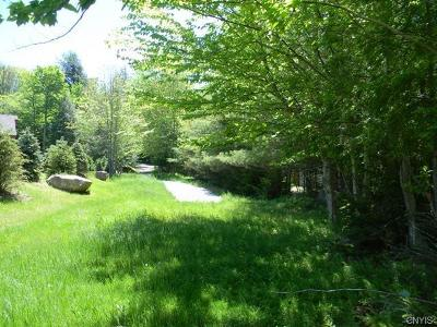 Old Forge Residential Lots & Land A-Active: South Shore Road