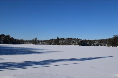 Old Forge Residential Lots & Land A-Active: Tamarack Drive