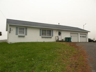 Evans Mills NY Single Family Home A-Active: $109,000