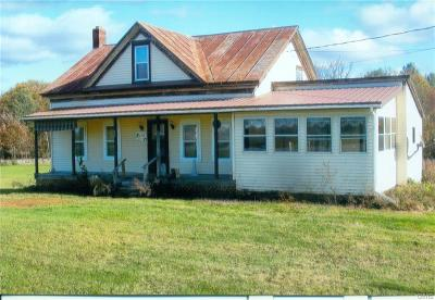 Hammond NY Single Family Home A-Active: $87,000