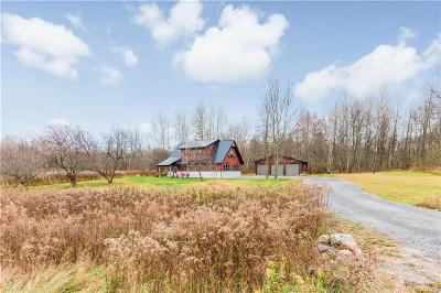 Single Family Home A-Active: 25690 County Route 42