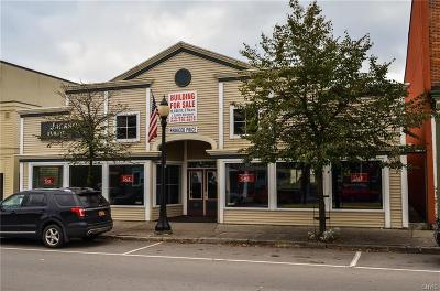 Boonville NY Commercial A-Active: $295,000