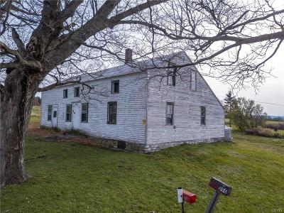Herkimer County Single Family Home A-Active: 396 Dockey Road