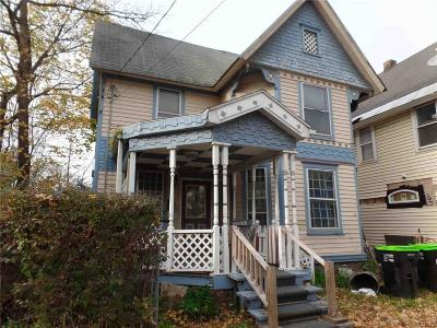 Herkimer County Single Family Home A-Active: 160 Otsego Street