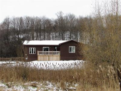 Herkimer County Single Family Home A-Active: 2781 Newport Road