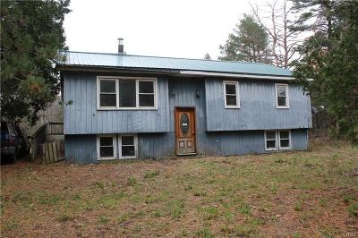 Oneida County Single Family Home A-Active: 667 Nys Route 49
