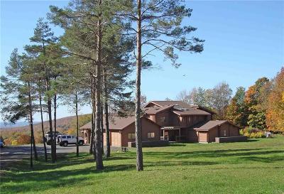 Herkimer, Ilion, Little Falls, Mohawk, Schuyler Single Family Home For Sale: 153 Upson Road