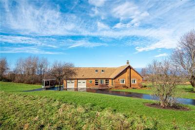 Williamson Single Family Home A-Active: 7741 Bear Swamp Road