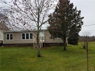 Plessis NY Single Family Home C-Continue Show: $89,900