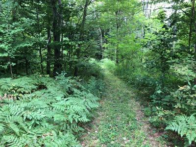 Chautauqua County Residential Lots & Land U-Under Contract: 00 Route 380
