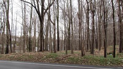 Residential Lots & Land A-Active: 00 Kasson Road