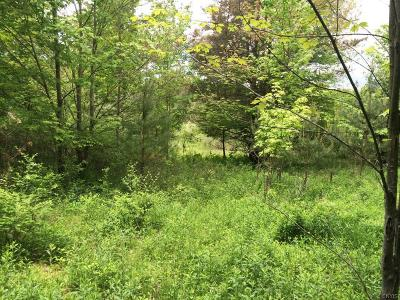 Residential Lots & Land A-Active: 00 Spring Hill Road