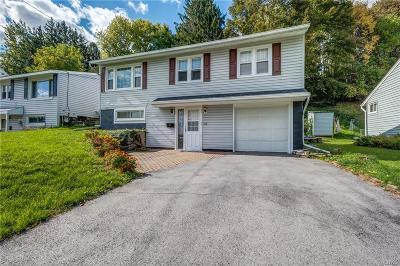 Syracuse Single Family Home A-Active: 213 Turner Avenue