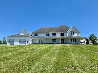 Watertown Single Family Home A-Active: 27090 Perch Lake Road