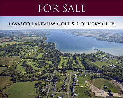 Owasco NY Commercial A-Active: $1,950,000
