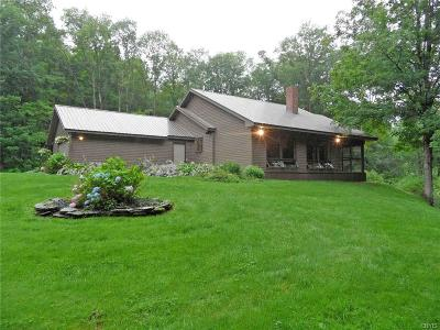 Oneida County Single Family Home For Sale: 12252 Redfield Road
