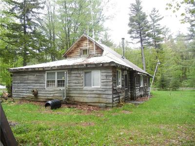 Lowville Single Family Home A-Active: 9035 Number Four Road