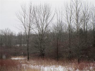 Clayton NY Residential Lots & Land A-Active: $40,000