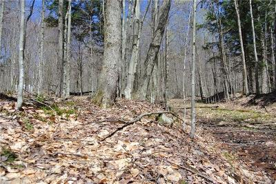 Old Forge Residential Lots & Land A-Active: Iroquois Road